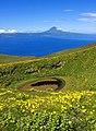 Açores 2010-07-19 (5049658759).jpg