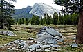A Land of Granite, Lembert Dome, Yosemite NP 5-15 (25770995343).jpg