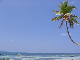 A beach at Kavaratti, Lakshadweep.jpg