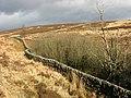 A drystane dyke near Little Tarras Water - geograph.org.uk - 683021.jpg