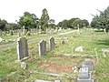 A guided tour of Broadwater ^ Worthing Cemetery (66) - geograph.org.uk - 2342103.jpg