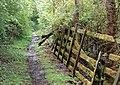 A moss-grown fence - geograph.org.uk - 1304984.jpg