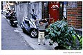 A narrow street with houses near Yizhong Street, Taichung 20070201.jpg