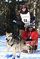 Aaron Burmeister running his 12th Iditarod (3416606457).jpg