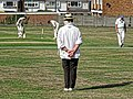 Abridge CC v High Beach CC at Abridge, Essex, England 30.jpg