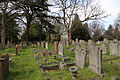 Across gravestones at City of London Cemetery and Crematorium 01.jpg