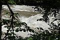 Admont-Weng - Naturdenkmal 958 - Kataraktstrecke der Enns - III.jpg