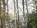 Afon Menai-Menai Straits from Treborth - geograph.org.uk - 383497.jpg