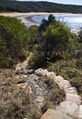 Agnes Water QLD rock path step.jpg