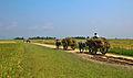 Agriculture of Bangladesh 8.jpg