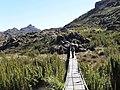 Agulhas Negras Trail^ - panoramio.jpg