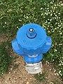 Aire de Villeroy (A19) - blue fire hydrant - 2.JPG