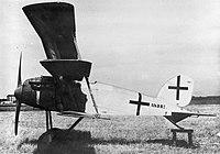 Albatros Dr.II triplane.jpg
