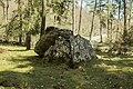 Albi trikuharria-09.jpg