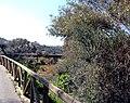 Alcoutim (Portugal) (32431755773).jpg