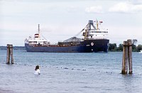 Algorail in (St Clair River Mich).jpg
