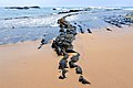 Aljezur selec portugal-08-b (34689199284).jpg