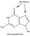 Alkylation guanine.png