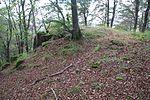 Allerburg (Dautphetal) (018).JPG