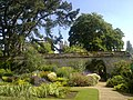 An obscured Magdalen Great Tower from the Botanic Gardens.jpg