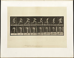 Animal locomotion. Plate 61 (Boston Public Library).jpg