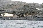 Antarctic Majesty (24572912769).jpg