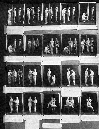 History of eugenics - Anthropometry demonstrated in an exhibit from a 1921 eugenics conference.