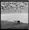 Aplin B13436 Spain1968 Madrid Bullfight 0014 (47451364751).jpg