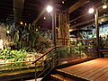 Aquarium Genoa 50.JPG