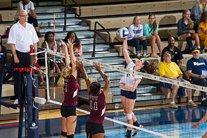 Texas Woman's Pioneers - Image: Athletics Volleyball vs TWU 2398 (15336986685)