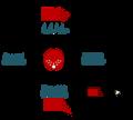 Ativação e inibição na célula ciliada.png