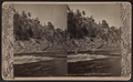 Ausable Chasm. Entrance stairway and lodge, by G. W. Baldwin.png