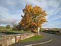 Autumn colours at Once Brewed - geograph.org.uk - 1018987.jpg