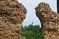 Bačka tvrđava - panoramio (11).jpg