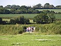 Balloon-watchers near Jack-in-the-Green - geograph.org.uk - 1386588.jpg
