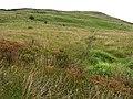Ballynasollus Townland - geograph.org.uk - 493564.jpg