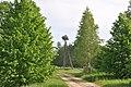 Baltā stārķa ligzda Nr.1142, Ārlavas pagasts, Talsu novads, Latvia - panoramio (1).jpg