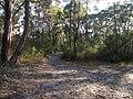 Bambara road - panoramio (3).jpg