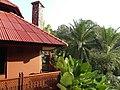 Ban Pong, Hang Dong District, Chiang Mai, Thailand - panoramio (9).jpg