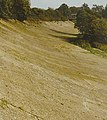Banked curve of the Brooklands Motor Racing Circuit. - geograph.org.uk - 40560.jpg