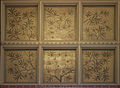 Banksia speciosa painting on the ceiling of the Natural History Museum, London.jpg