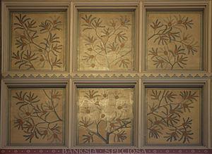 Painting of Banksia speciosa