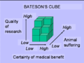 Bateson's cube x.png
