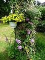 Baumstumpf als Blumenständer - panoramio.jpg
