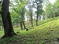 Belmontas, Vilnius, Lithuania - panoramio (86).jpg