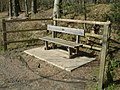 Bench at Thistle Hill - geograph.org.uk - 369302.jpg