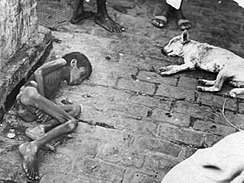 Bengal famine 1943 photo.jpg