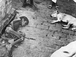 Poverty in India - Image: Bengal famine 1943 photo