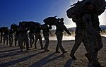 Best Sapper Competition 2010 DVIDS271893.jpg