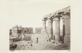 Bild från familjen von Hallwyls resa genom Egypten och Sudan, 5 november 1900 – 29 mars 1901 - Hallwylska museet - 91734.tif